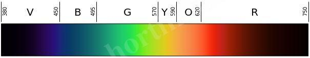 605px Linear visible spectrum